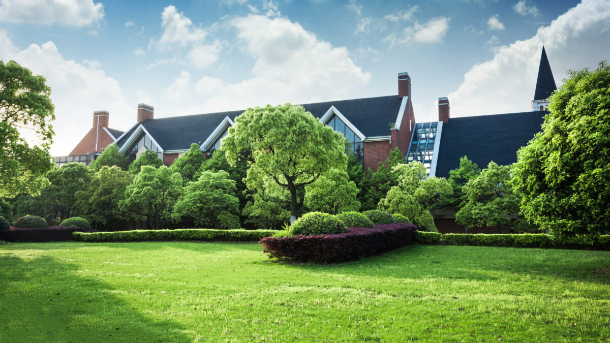Importance of Commercial Landscaping Services