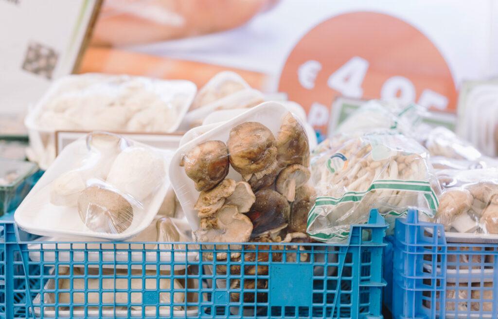 Wholesale Mushroom Supplier
