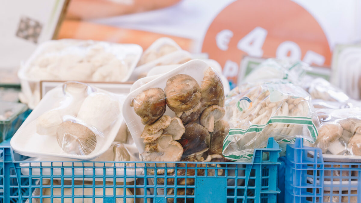 Welcome to the World of Mushrooms: A Delicious and Healthful Food