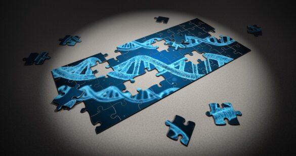 Study of Genes