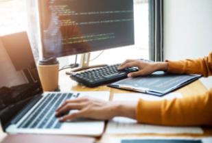 Software Application Developer